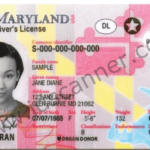 New Maryland Driver License 2016