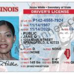 IL Secure Driver License